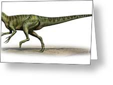 Deltadromeus Agilis, A Prehistoric Era Greeting Card