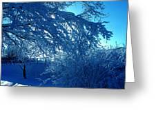 Denmark In Winter Greeting Card
