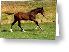 Derby Time Greeting Card