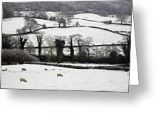 Derwent Valley, Derbyshire, England Greeting Card