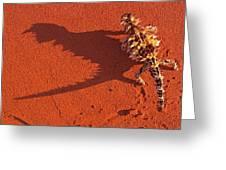 Desert Adapted Thorny Devil Australia Greeting Card