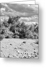 Desert Cloud Bw Palm Springs Greeting Card