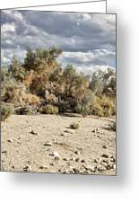 Desert Cloud Palm Springs Greeting Card