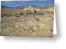 Desert Washout Greeting Card