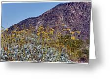 Desert Yellow Greeting Card