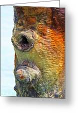Detail Of A Rusted Dock Pier  Greeting Card