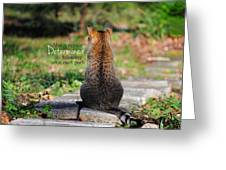 Determined Encouraging Cat Photo Greeting Card