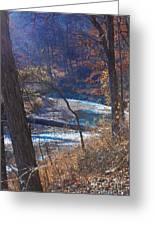 Devils Den State Park Creek Greeting Card by Patty Vicknair