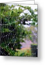 Dewdrops Dimension Greeting Card