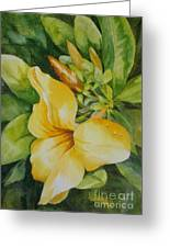 Dianne's Flower Greeting Card