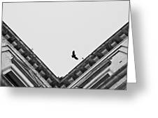 Diciasettegiugno2011 19.12 Greeting Card