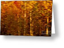 Did You Say Trees Greeting Card