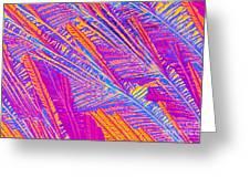 Didanosine Crystal Greeting Card