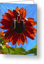 Digital Art Essay IIi Greeting Card