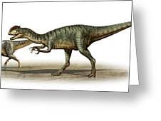 Dilophosaurus Wetherilli, A Prehistoric Greeting Card