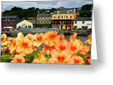 Dingle And Flower Pot Greeting Card