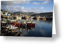 Dingle, Co Kerry, Ireland Boats In A Greeting Card