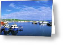 Dingle Town & Harbour, Co Kerry, Ireland Greeting Card