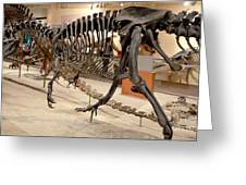Dinosaurs At The Smithsonian Greeting Card