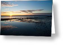 Discovery Park Reflections Greeting Card