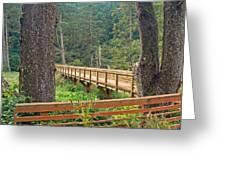 Discovery Trail Bridge Greeting Card