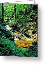 Distant Ozone Falls And Rapids - Summer Greeting Card