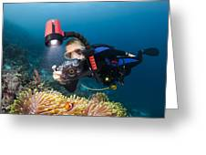 Diver And Anenome Fish Greeting Card