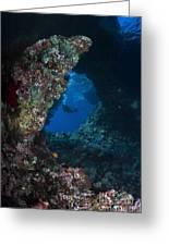 Diver At Boo Windows In Raja Ampat Greeting Card