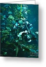 Diver Feeding Fish Greeting Card