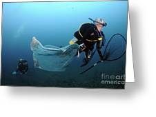 Diver Removes Invasive Indo-pacific Greeting Card