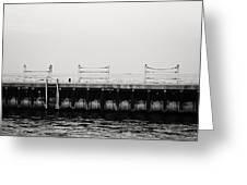 Diversey Harbor Greeting Card