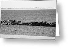 Diving Coney Island In Black And White Greeting Card