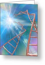 Dna Helices Greeting Card