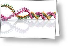 Dna Molecule Unwinding Greeting Card