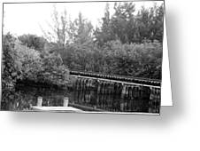 Dock On The River In Black And White Greeting Card