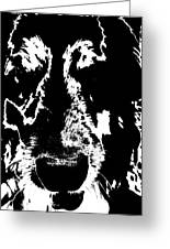 Dog Abstract Black And White Greeting Card
