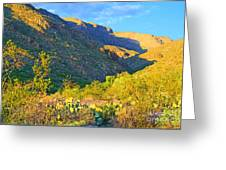 Dog Canyon Nm Oliver Lee Memorial State Park Greeting Card
