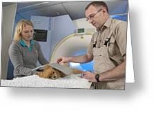 Dog On An Mri Scanner Greeting Card