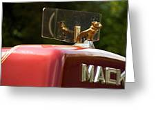 Dog On Truck  Greeting Card