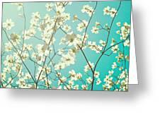 Dogwood Tree Greeting Card by Kim Fearheiley