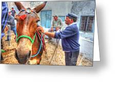 Donkey Ride Greeting Card