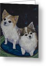 Dot And Dolly Greeting Card