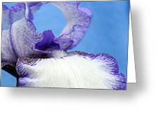 Double Delight Greeting Card