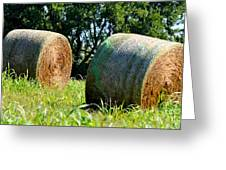 Double Hay Rolls Greeting Card