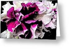 Double The Frill Greeting Card by Yvonne Scott