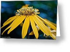 Double Yellow Greeting Card