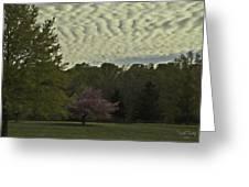 Douglassville Delight Greeting Card