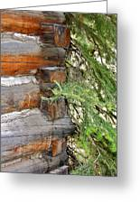 Dovetail Log Construction Greeting Card