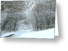 Down A Winter Road Greeting Card
