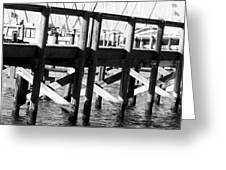 Down By The Marina Greeting Card